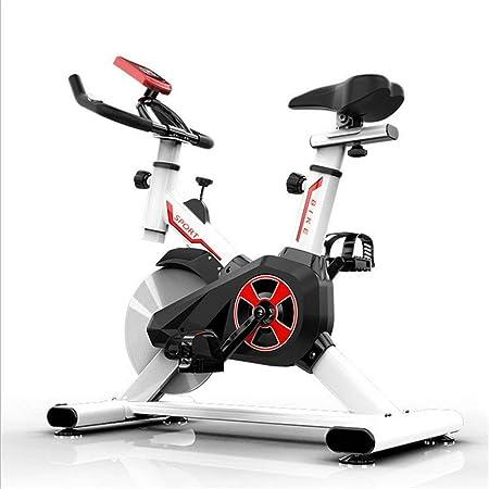 LSYOA Magnético Bicicleta Spinning, Vertical Indoor Bicicleta, con Pantalla LCD, Ajustable Reposabrazos y Asiento Bicicleta Estática,White: Amazon.es: Hogar