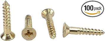 #6 X 2 Flat Slot Drive 100 pcs Brass Wood Screws