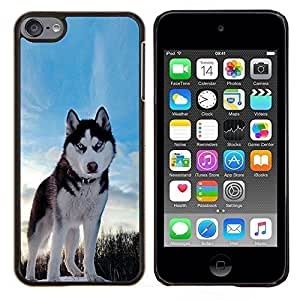 BearCase / Cubierta de protección Caso duro de la contraportada de Shell Plástico /// Apple iPod Touch 6 6th Touch6 /// Happy Dog Husky
