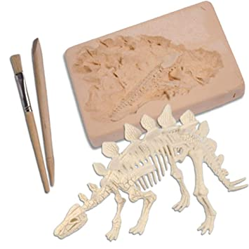 Dinosaur Dig - Dinosaur Fossil Excavation Kit