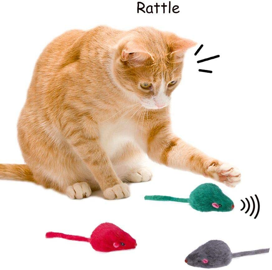 Yangbaga Juguetes para Gatos Juguetes Interactivo Ratón y Bolas Varias con Campanas y Plumas, Cabezas de Repuesto y Catnip Ball Incluido Gatito Gato (14pc): Amazon.es: Productos para mascotas