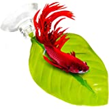 SunGrow Leaf Hammocks for Betta Fish, 6 Inches, Lightweight and Realistic Resting Spot, Dark Green Plastic Bed, Comfortable, Easily Attaches, Suction Cups Included, 3 Pack