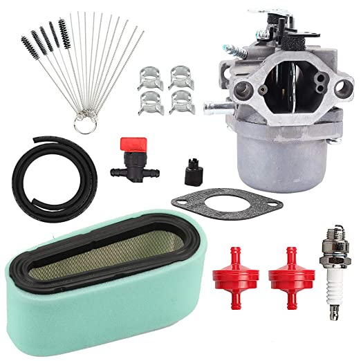 Hayskill 799728 Carburador Carb w 496894S 493909 Kit de ...