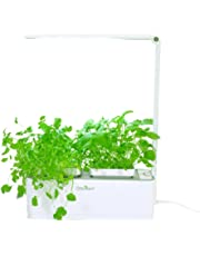 Odyseed - Potager d'IntŽrieur 100% Bio - Cultivez vos herbes aromatiques