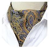 Secdtie Mens Tie Ascot Floral Paisley Patterned Silk Jacquard Woven Cravat Gift