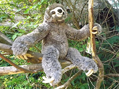 This Place Is A Zoo Small Plush Toy Sloth - 10&Quot; Soft And Cuddly Stuffed Animal Sloth -