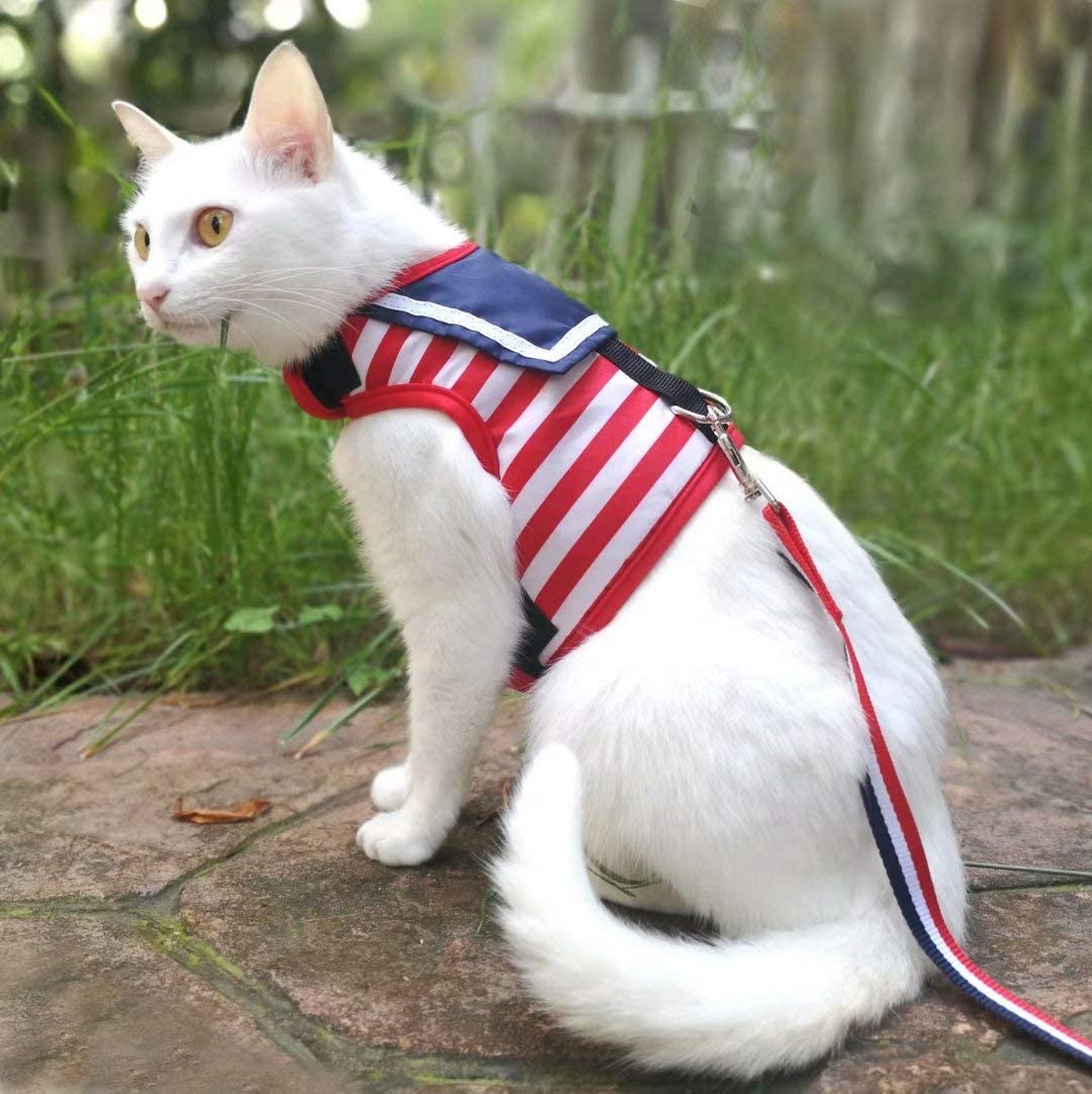 Adjustable Cat Walking Jackets Padded Cat Vest Escape Proof Cat Harness with Leash