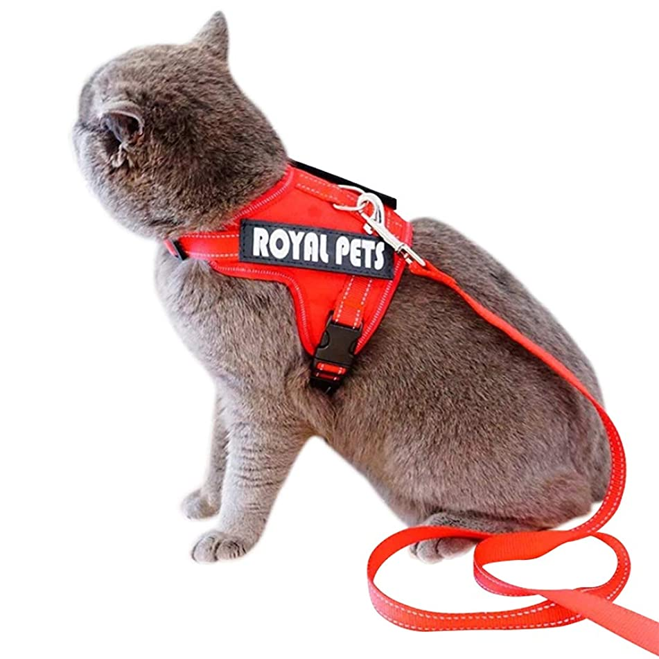 活気づける神経衰弱ストライクPETBEMO 猫 リード 散歩 ハーネス 大型猫 抜けない 胴輪 安全 2点セット l ブラック(l)