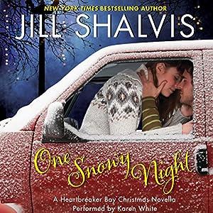 One Snowy Night Audiobook