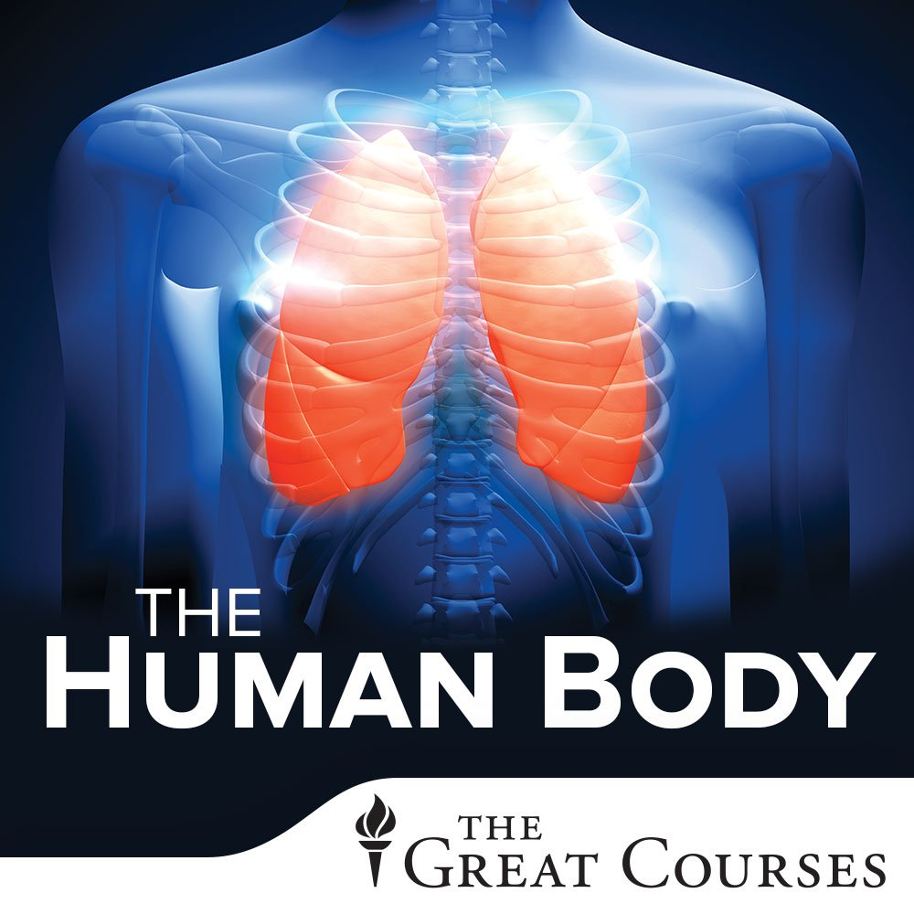Amazon.com: The Human Body: How We Fail, How We Heal: Anthony A ...