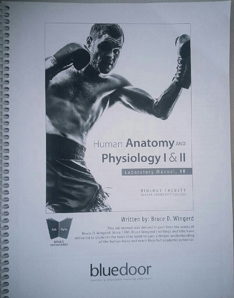 Workbooks » Anatomy And Physiology Coloring Workbook Elaine Marieb ...