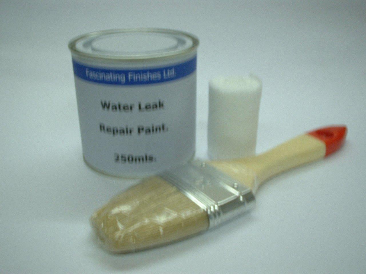 1 x 250ml White. Stop Water Leak Repair Paint Kit. Repairs Gaps ...