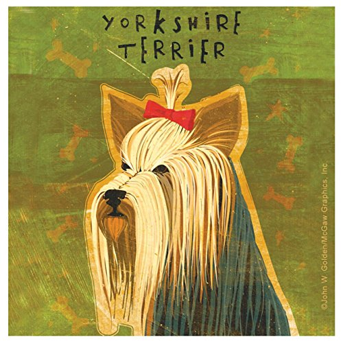(Thirstystone Occasions Coaster, Yorkshire Terrier, Multicolor)