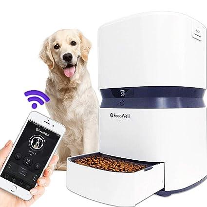 Amazon.com: Sweet 10 Dispensador de comida para perro ...