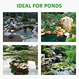 GROWNEER 13 x 20 Feet 14.5 Mil HDPE Pond Liner Pond Skins for Fish Ponds, Streams Fountains and Water Gardens