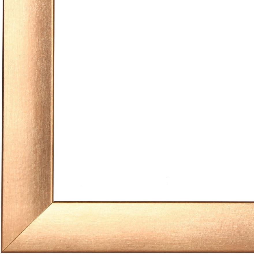 Cadre de Photo Cadre dimage OLIMP 11x20 cm ou 20x11 cm in TERRACOTTA avec verre artificielle normale et le panneau arri/ère 35 mm baguettes dencadrement MDF et feuille d/écorative enti/èrement recouvrante