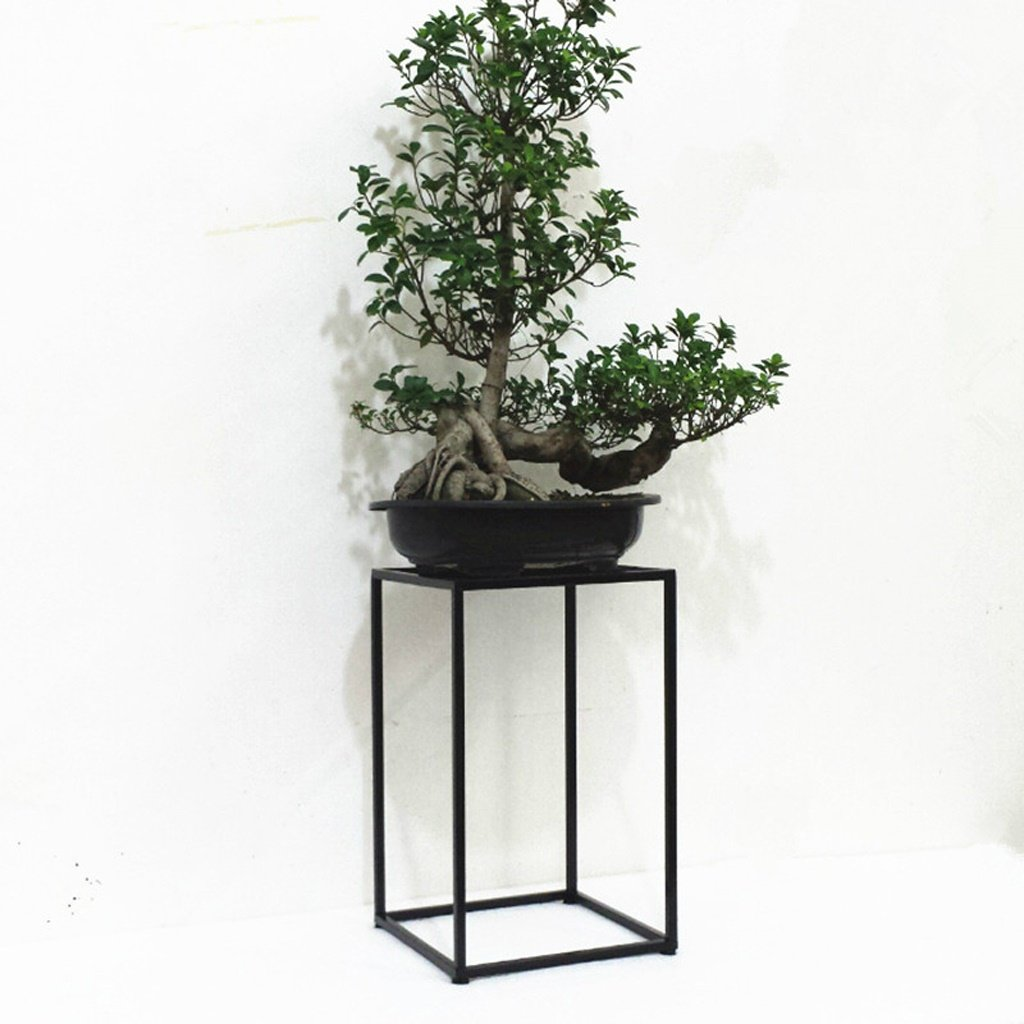 CL- Flower Rack - Moderno Stile Semplice da Pavimento Soggiorno Balcone Ferro da Stiro in Ferro Vaso Rack Stand di Fiori (Dimensioni   30  50cm)