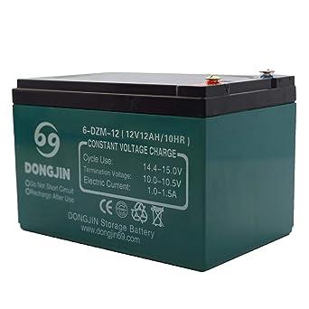 Amazon.com: tdpro 12 V, 12 Ah 6-DZM-12 batería recargable ...