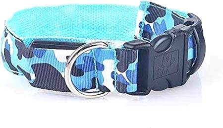 "Bichon Frise Adjustable Collar Medium 10-16/"" Blue"