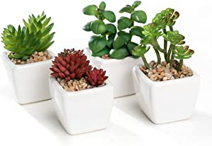 Nattol Modern Artificial Succulent Plants Potted in Cube-Shape White Ceramic Pots for Home Decor, Set of 4 Mini Size