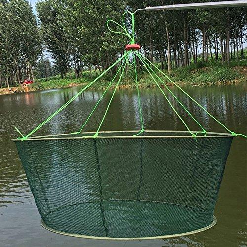 RG Portable Folded Fishing Net Hand Casting Cage for Fish Shrimp Minnow Crayfish Crab Baits Cast Mesh Trap Nets (Diameter:39.4inch/100cm) ()
