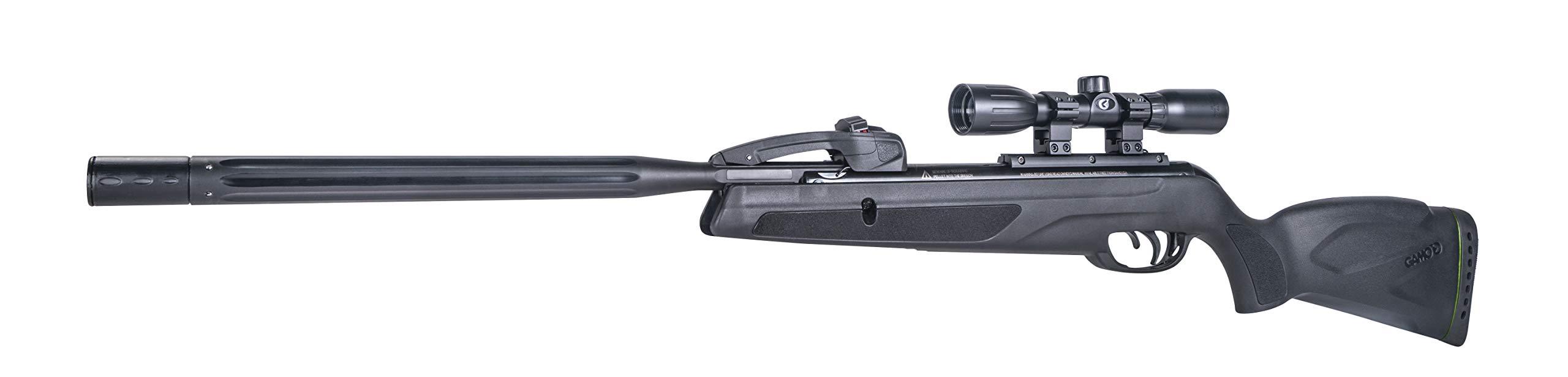 Gamo 611006875554 Swarm Whisper Air Rifle, .22 Caliber by Gamo