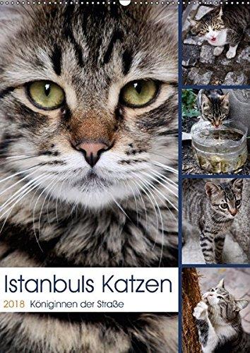 Istanbuls Katzen (Wandkalender 2018 DIN A2 hoch): Katzenportraits aufgenommen in Istanbul. (Monatskalender, 14 Seiten ) (CALVENDO Tiere) [Kalender] [Apr 01, 2017] Wagener, Harald