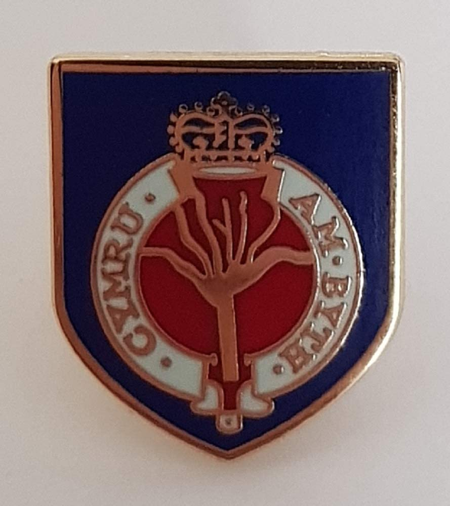 HM Armed Forces Welsh Guards Veteran lapel pin badge .