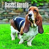 Basset Hounds Dog Wall Calendar 2017 {jg} Best Holiday Gift Ideas - Great for mom, dad, sister, brother, grandparents, , grandchildren, grandma, gay, lgbtq.