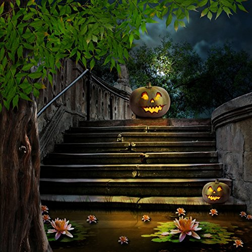Baocicco ハロウィン クラックス 階段 グリマース パンプキン ランタン 背景 10x10フィート ビニール 写真 背景 大きな木 蓮の花 幾何学模様 ホラー 夜のパーティー 子供のトリックやお菓子   B07G7P2LXS