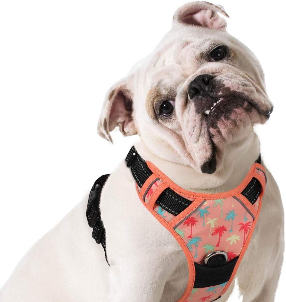 homein® dorsal para perro anti Tiro/Anti soffocamento ajustable 3 ...