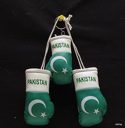 Mini guantes de boxeo para coche Pakistán + llavero: Amazon ...