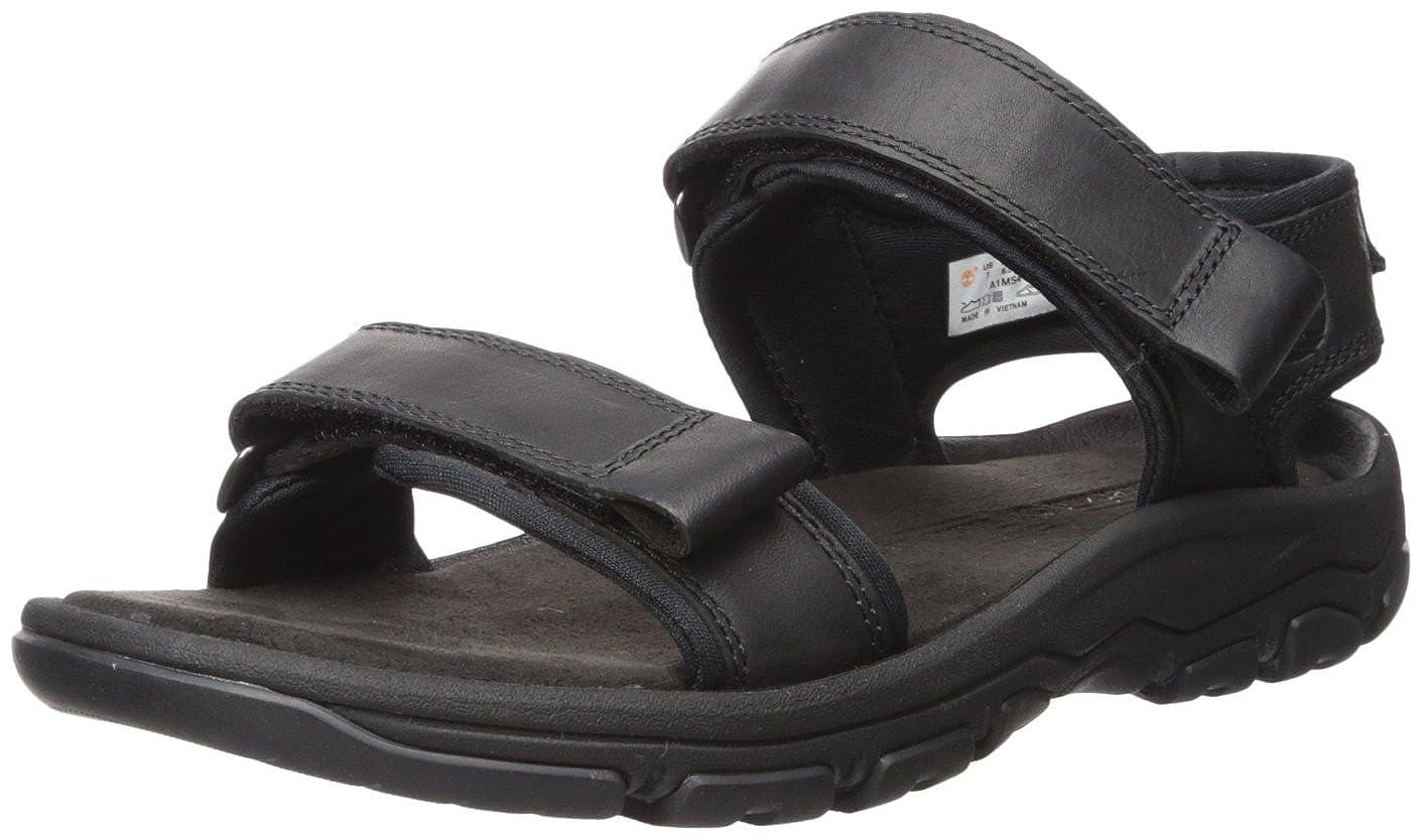 6a05a1d8e87a8 Amazon.com | Timberland Men's Roslindale 2-Strap Sandal | Sandals