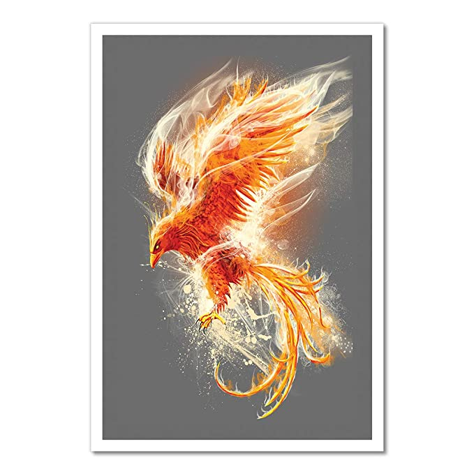 Amazon Com Phoenix Artwork Canvas Rolled In A Tube 16