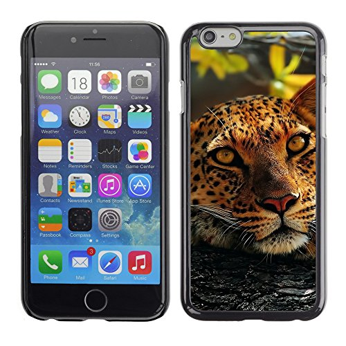 Premio Sottile Slim Cassa Custodia Case Cover Shell // V00003559 léopard dans un arbre 4 // Apple iPhone 6 6S 6G PLUS 5.5""