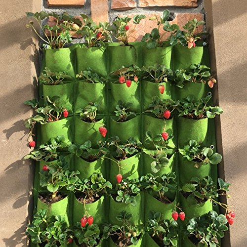 Setmas Wall Hanging Vertical Mount Planter Plant 25pocket Grow Bag Indoor Outdoor Flower Vegetable Planter,39.4inch x39.4inch,Green by Setmas