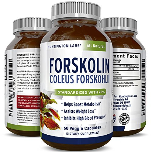 Huntington Labs Pure Forskolin Supplement Highest Grade Weight Loss Supplement Diet Pills Boosts Energy for Women & Men 60 Capsules
