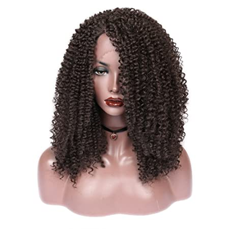 Amazon.com : HANNE Lace Front Wig Afro Kinky Curly Wigs L Part Lace Front Wig for African American Women (4#) : Beauty