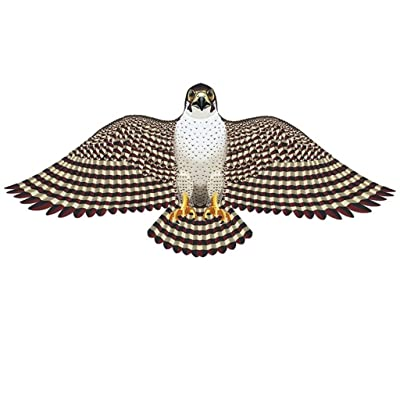 """Gayla 839 Peregrine Falcon Wing Flapper 55"""", 839: Toys & Games"""