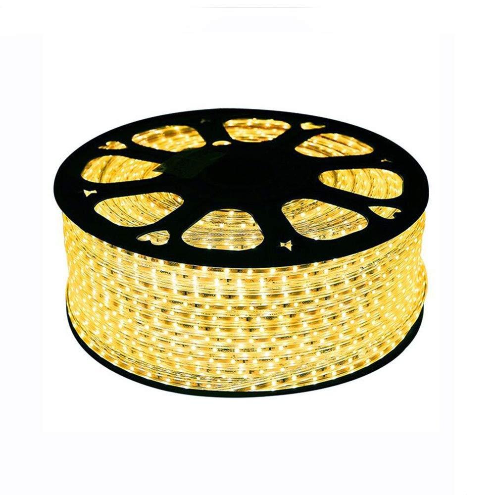 ライトストリップ、 調光対応LEDストリップライトキット4.5W / m LEDストリップライトブルーLEDストリップライトテレビ壁の装飾屋外装飾 ライトストリップ、 (サイズ さいず : 100 m) B07S8MFHLX  100 m