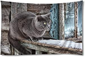 FHYGJD Gray Cat Hut Snow Winter Art Print Tapestries,Home Wall Decor Tapestry(40x60 inch)