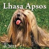 2011 Lhasa Apsos Calendar