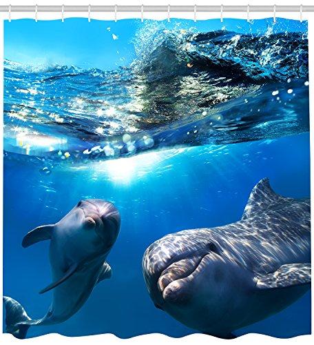 Waterfall Dolphin (Cute Sea Animal Dolphin Shower Curtain Waterproof Shower Accessories 69x84)