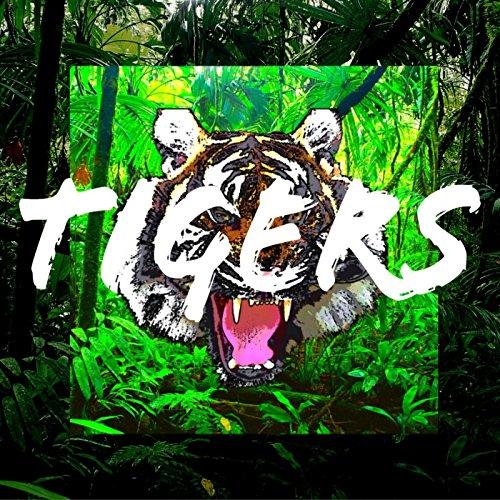 Tigers (Tigers Slate)