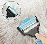 TimberRain 2-in-1 Deshedding Brush, Professional
