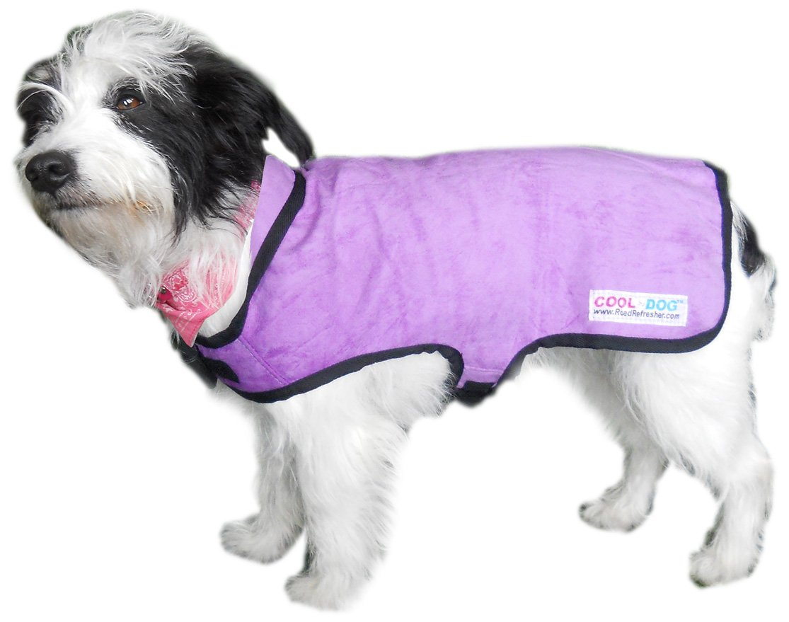 Amazon Dog Coats Small