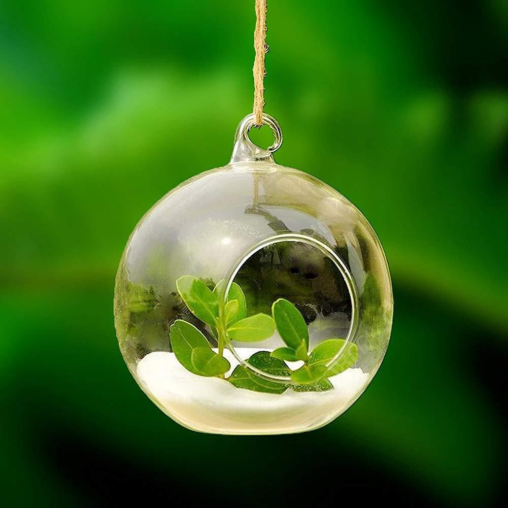 Vetro 8 cm Wansan paesaggio bottiglia in vetro a forma di sfera mini Air Plant Terrariums vaso fiore pianta micro paesaggio bottiglia