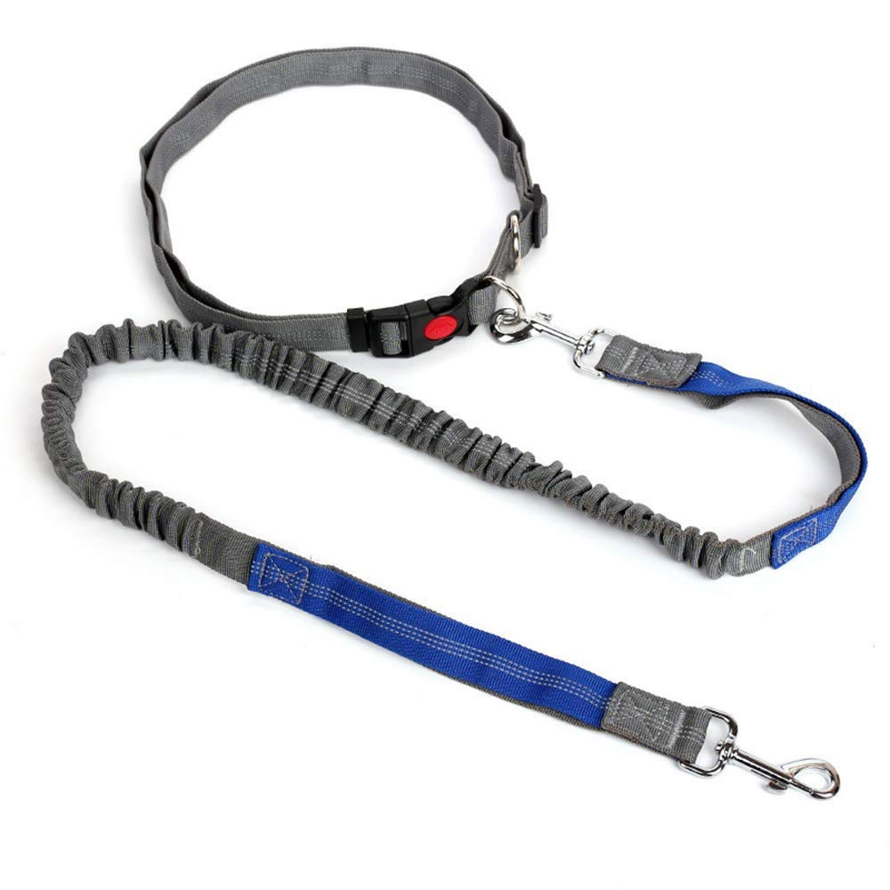 FANQIECHAODAN Retractable Hands Free Nylon Dog Leash with Bungees for Small and Medium Dogs,Adjustable Waist Belt,for Running Walking Hiking Jogging by FANQIECHAODAN