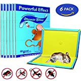 Mouse Glue Trap, Rat Glue Traps, Strongly Adhesive & Extra Large, Best Peanut Butter Scented Mouse Traps Glue Board for Mice & Rodent &Pests & Bug & Ant & Spider - 6 Pack
