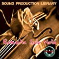 ROMANTIC SOLO VIOLIN - HUGE Original Multi-Layer Samples Library on 4 DVD from SoundLoad